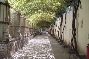 The Madero Winery in Parras, one of the Magical Towns in Mexico